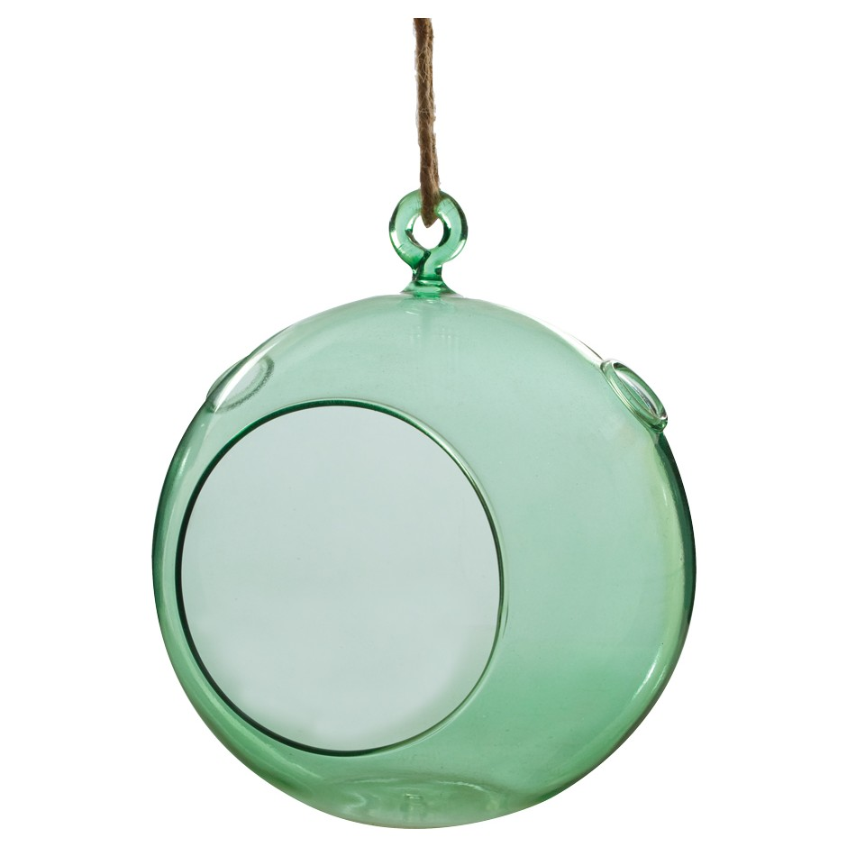 ... Glass Globe Terrarium with jute rope hanger. Hover to zoom - 6