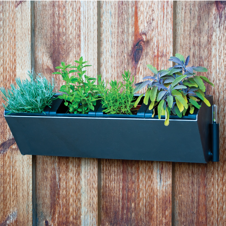 22 5 Vesi Self Watering Vertical Wall Planter Pride