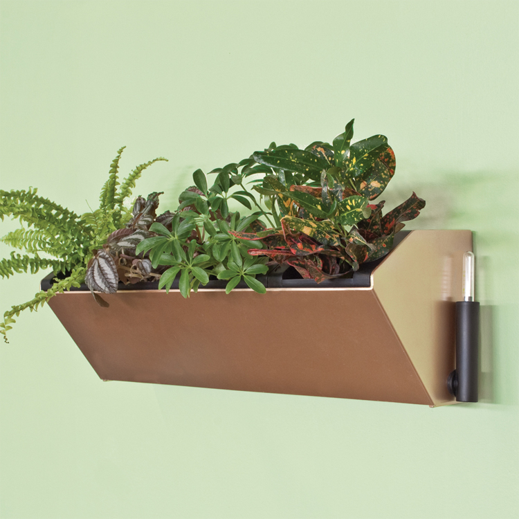 Watering Wall Planters Polanter Self Watering Vertical
